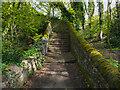SE1125 : Steps on Footpath 9/368/1, Northowram by Humphrey Bolton