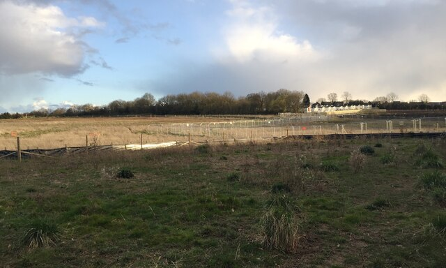 HS2 enabling works, Crackley-Burton Green, March 2021 (15)