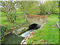 TM2885 : The head and wheelrace at Homersfield former watermill by Adrian S Pye