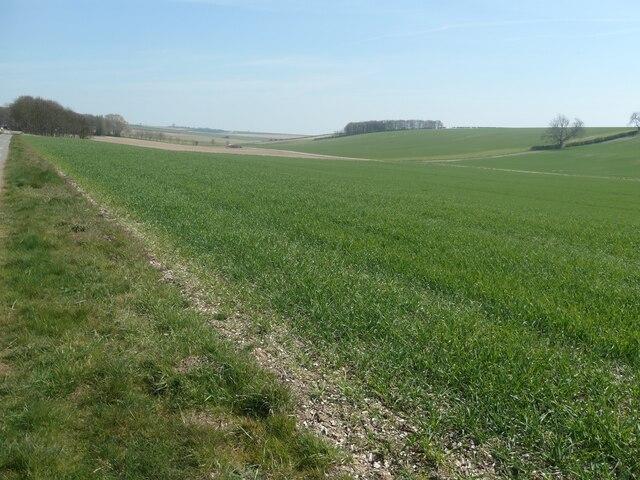 Middledale farmland