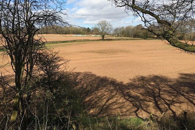 HS2 enabling works, Crackley-Burton Green, March 2021 (1)