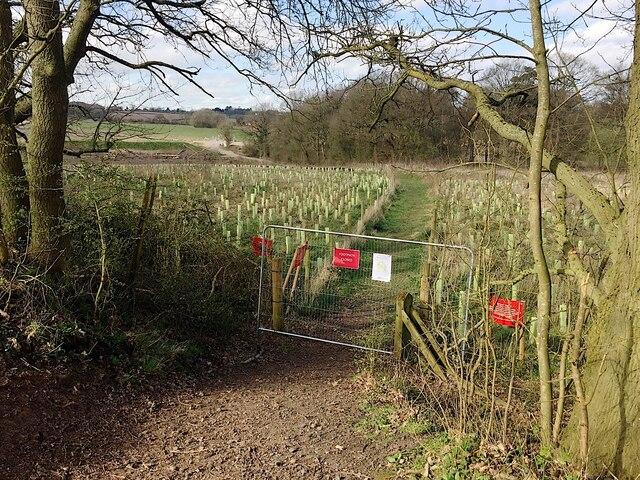 HS2 enabling works, Crackley-Burton Green, March 2021 (6)