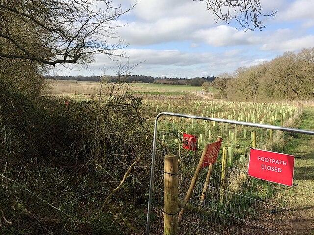 HS2 enabling works, Crackley-Burton Green, March 2021 (8)