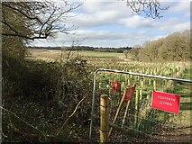 SP2775 : HS2 enabling works, Crackley-Burton Green, March 2021 (8) by Robin Stott