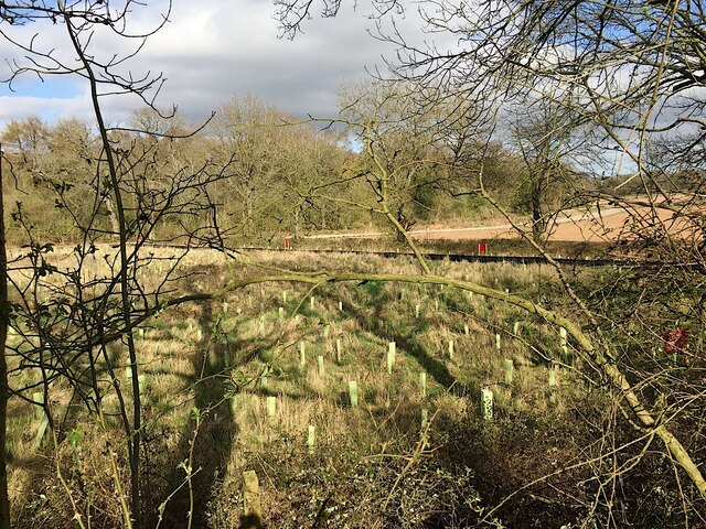 HS2 enabling works, Crackley-Burton Green, March 2021 (4)