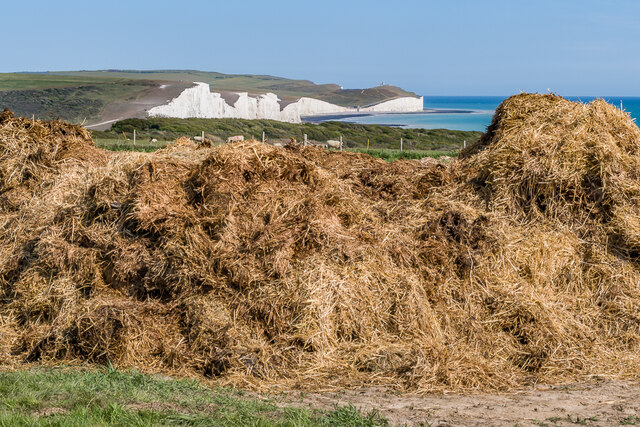 Muck heap with a view