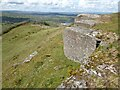 SO1224 : Rock outcrops on Allt yr Esgair by Philip Halling
