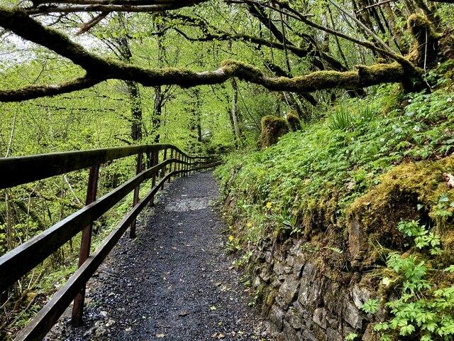 Elevated walk, Sloughan Glen