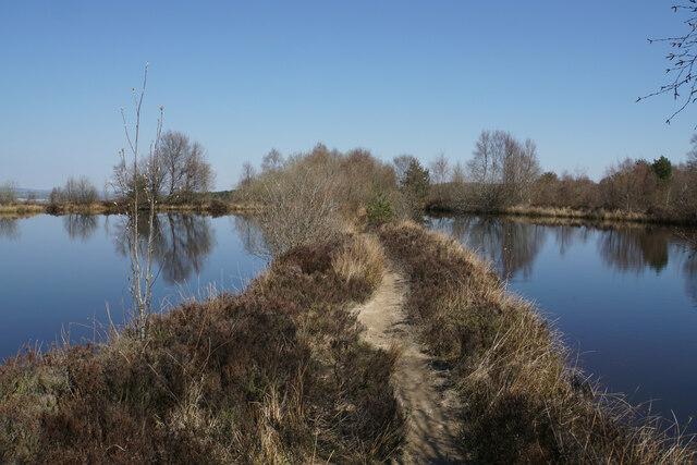 Path through the mill pond