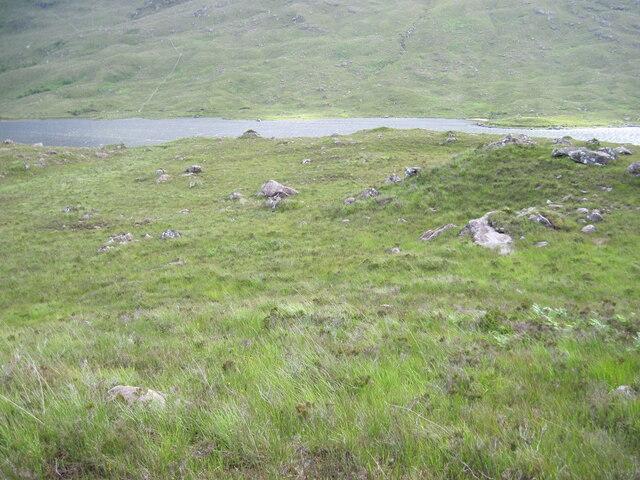 Hillside on west side of Loch Damh