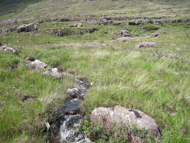 Lower hillside of Ben Shieldaig