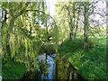 TM2260 : River Deben upstream at Cretingham bridge by Adrian S Pye