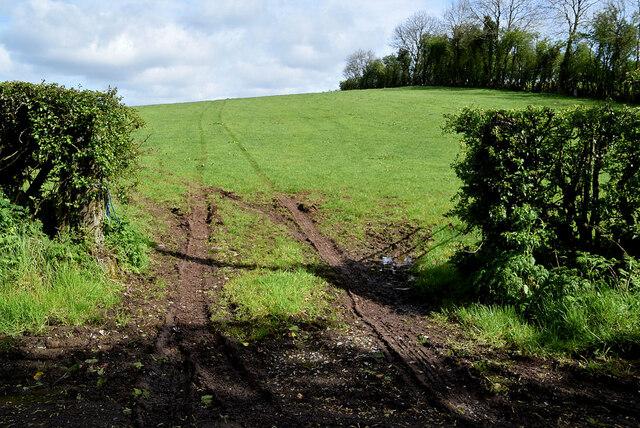 Muddy entrance to field, Tattyreagh Glebe