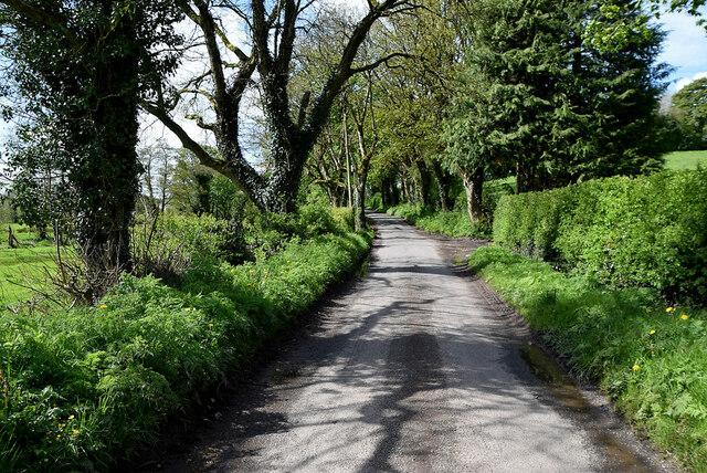 Blackfort Road, Blackfort