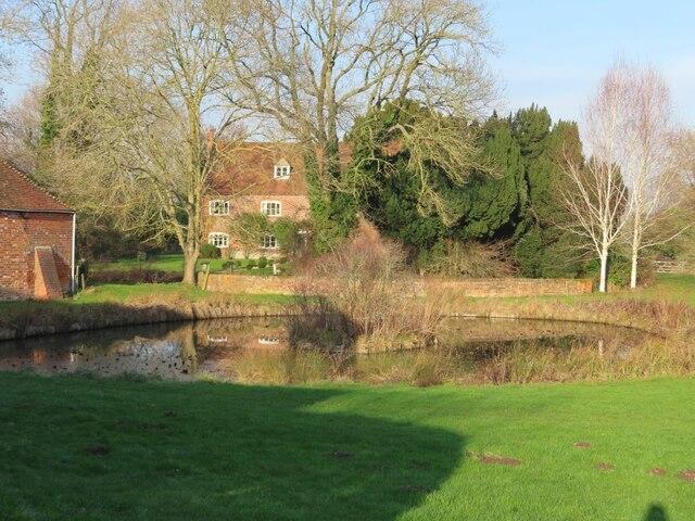 Pond at Lollingdon Farm