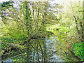 TM2956 : River Deben downstream from Glevering Bridge by Adrian S Pye