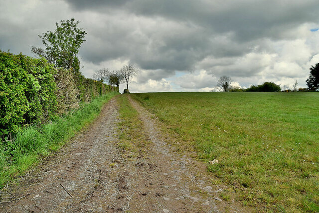 Track along a field, Drumlagher