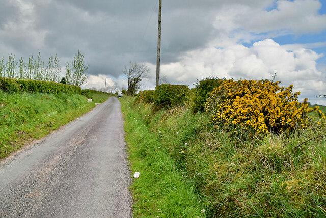 Syonee Road, Dungoran