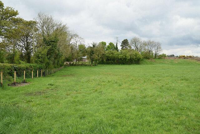 Countryside at Syonfin