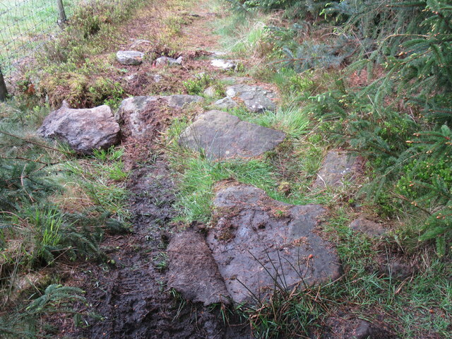 Possible stone trod on Foss Lane