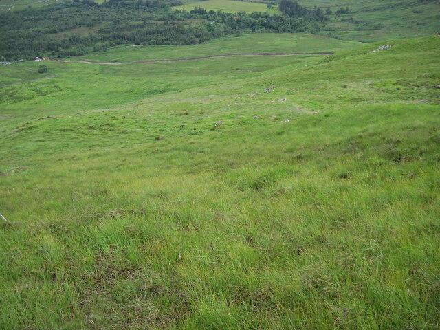 Hillside towards Tullich
