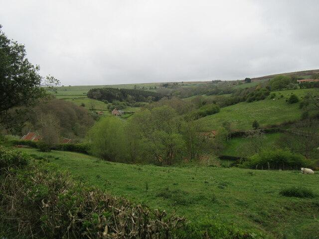 Near Littlebeck