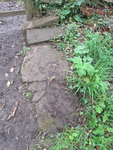 Stone trod near Littlebeck