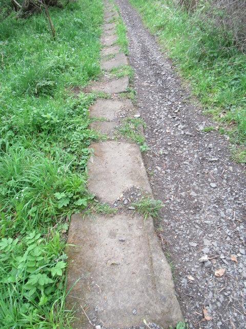 Seggymire Lane 8