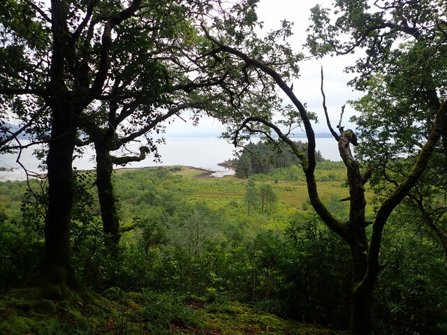 Looking east from the Torosay footpath