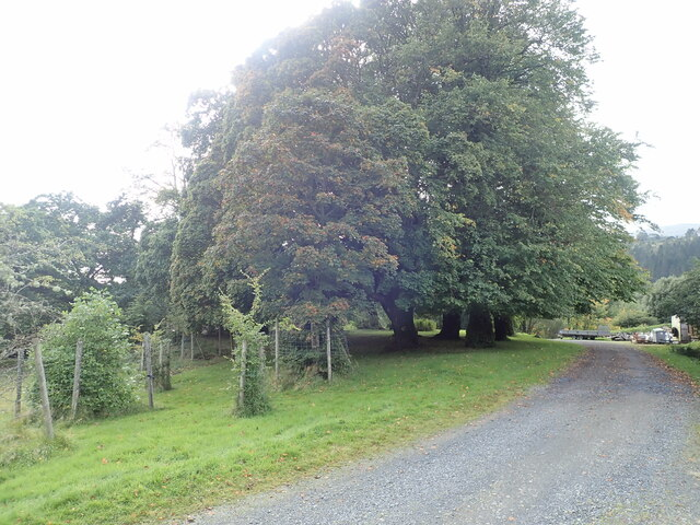 The drive to Torosay Castle
