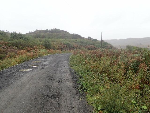 Forestry road, Loch Frisa