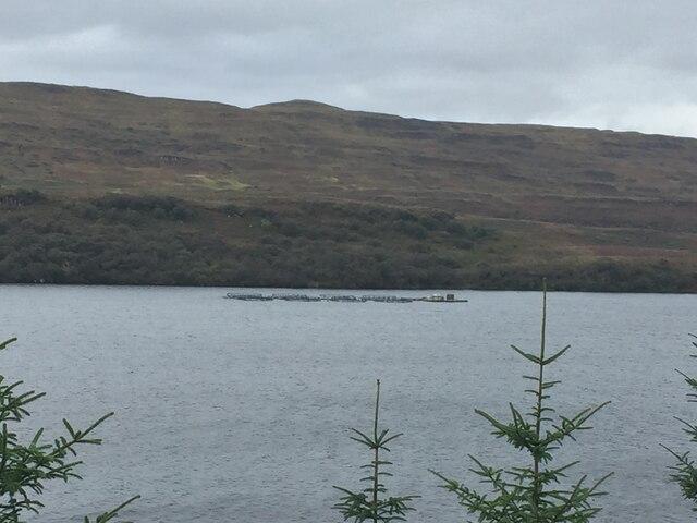 Fish farm, Loch Frisa