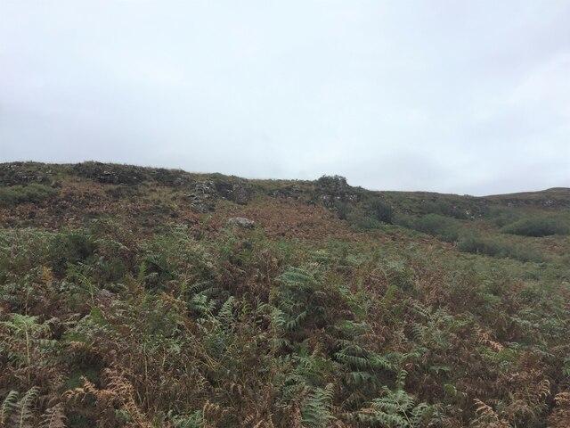 Bracken covered slopes of  'S Airde Beinn