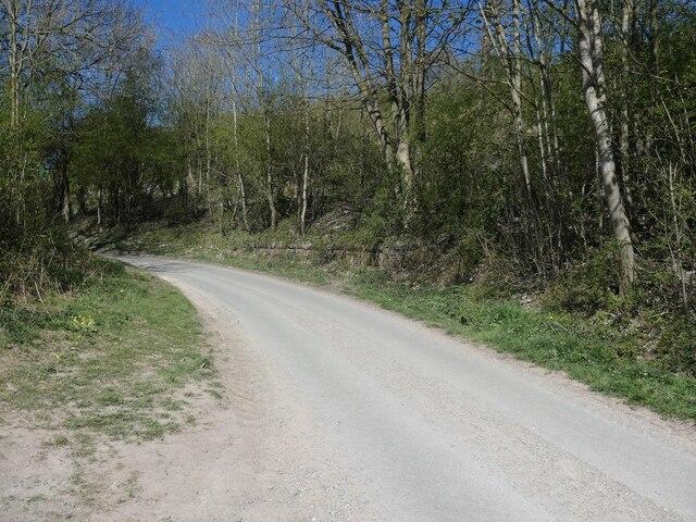 The lane to Goodmanham