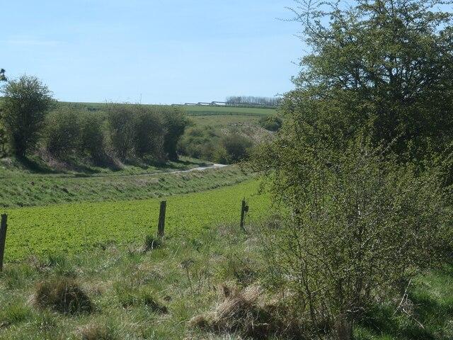 Road through Goodmanham Dale