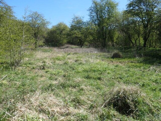 Former site of rifle butts, near Goodmanham