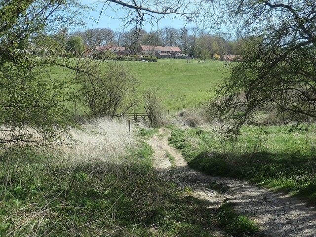 Public footpath to Goodmanham