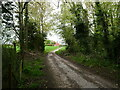 TG2632 : Dwelling at end of Road by David Pashley