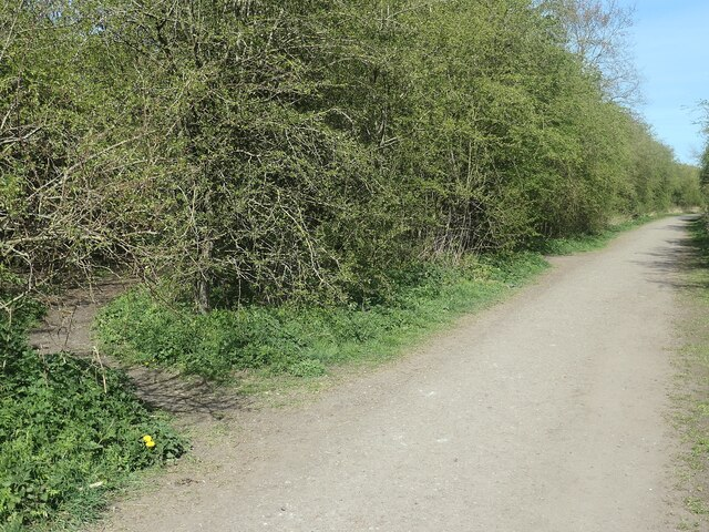 Public footpath junction at a former railway junction