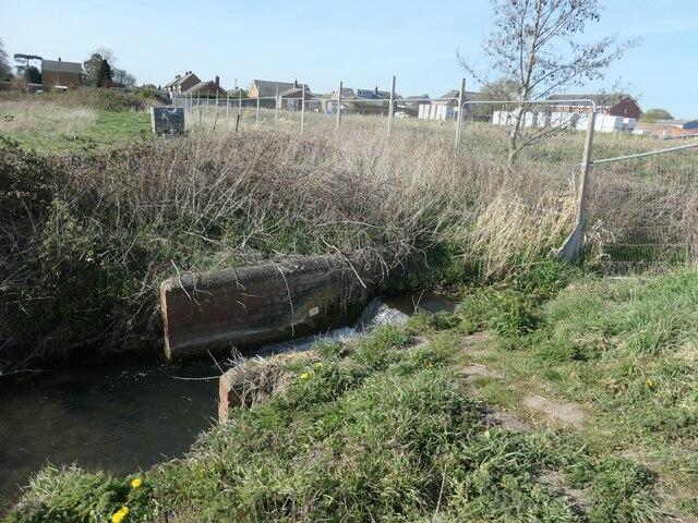 Weir on Weighton Beck