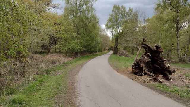 Path and drive to Springlock Gate