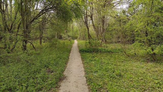 Path through North Leigh Common