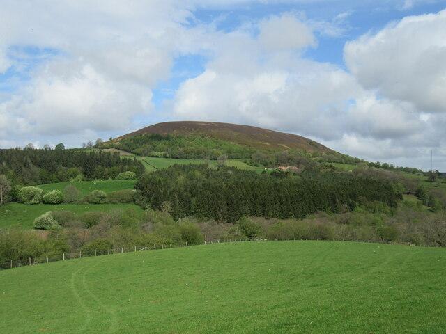 Near Fair Hill Farm