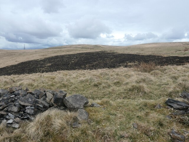 Burnt moorland, south-east of Cold Greave Clough