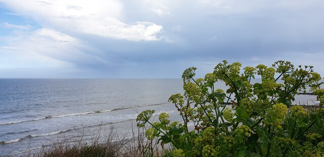 Approaching Storm, Mundesley