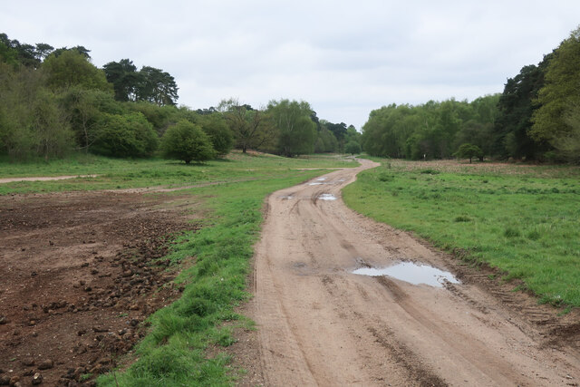 Track to Lackford