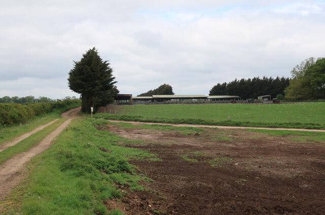 Animal sheds at Sheep Walk