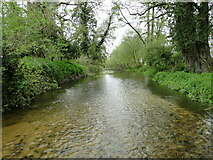 TM3152 : The River Deben at Eyke by Adrian S Pye