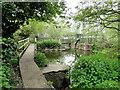 TM3155 : River Deben upstream of Campsea Ash by Adrian S Pye