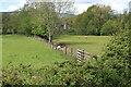 SO3506 : Fence between riverside meadows by M J Roscoe